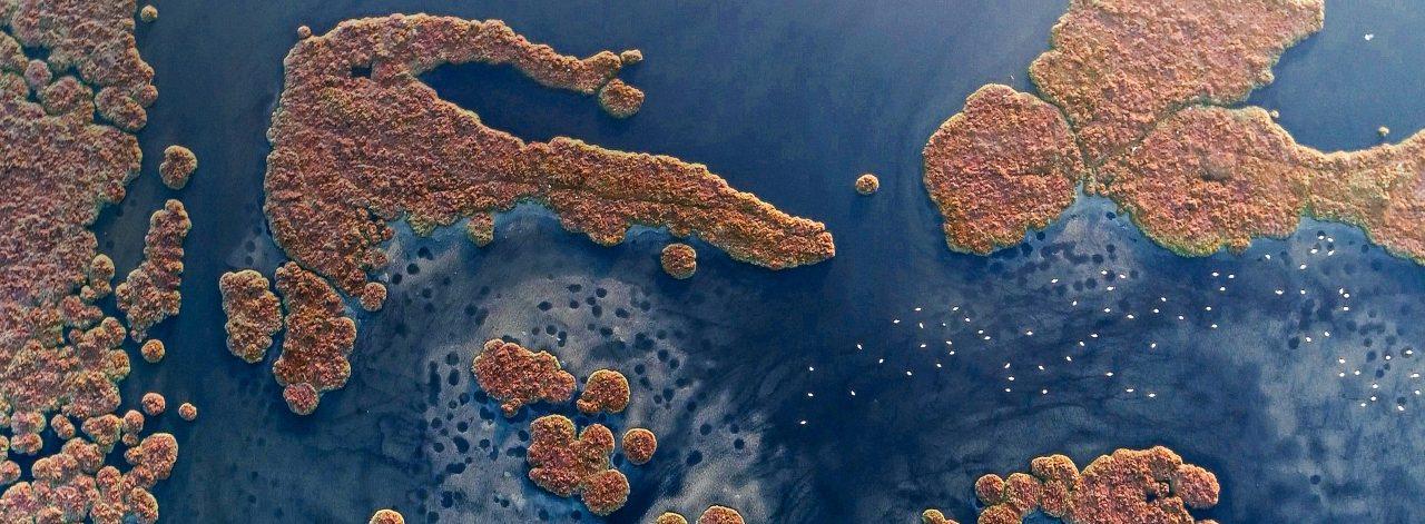 İzmir'in Gediz Deltası UNESCO Dünya Doğa Mirası edilsin!