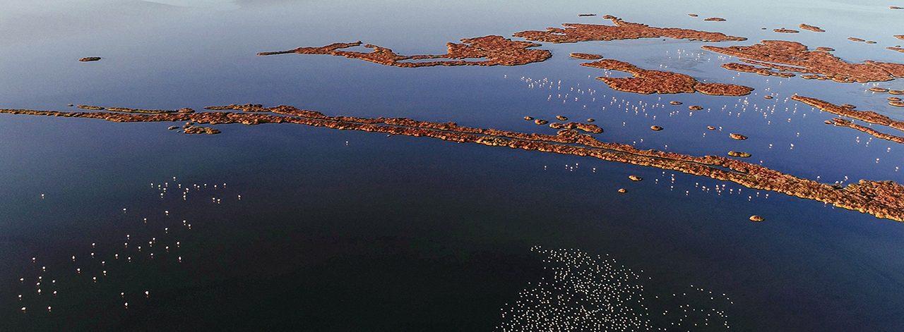 İzmir'in Gediz Deltası UNESCO Dünya Mirası Yolunda