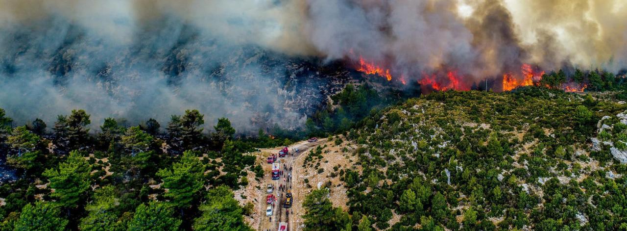 Orman Yangınlarıyla İlgili 9 Yanlış Bilgi